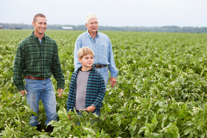 Image: Three generations on family farm, standing in potato field ready for harvesting. Main focus on boy (8 years).