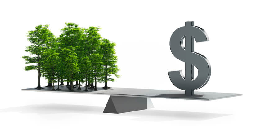 Image: a scale balanced with trees on one side and a dollar sign on the other