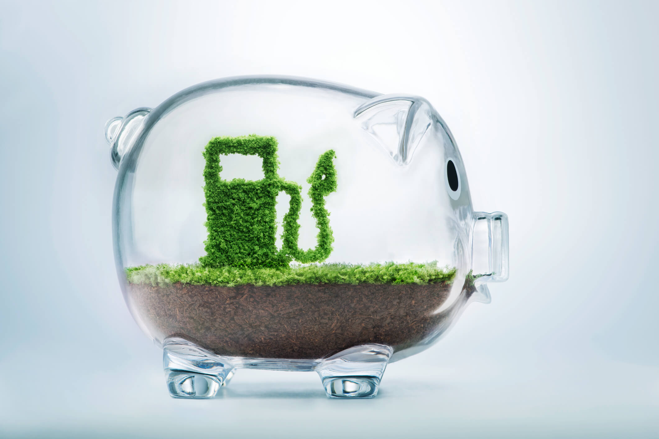 Image: a translucent piggy bank with soil and grass inside. there is a small bush in the shape of a gas pump inside.