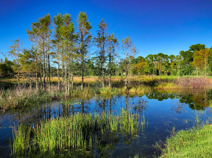 Image: DEP Chesapeake Bay Watershed
